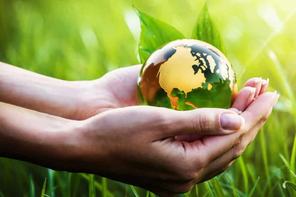 Nachhaltigkeit - Sustainability