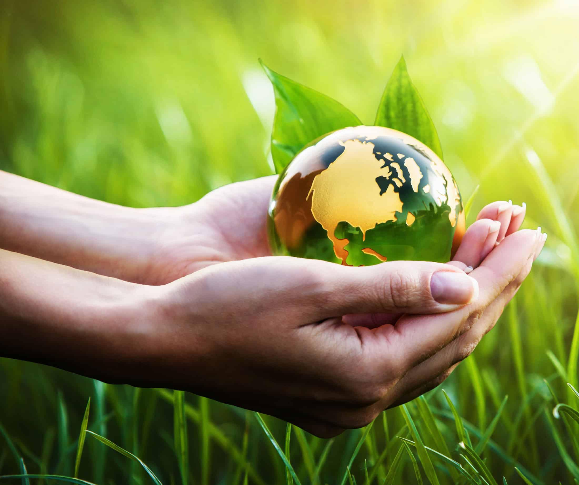 Umweltfreundlich mit Photovoltaikanlage und Heizkraftwerk